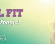 Total Fir BudiFitMama program
